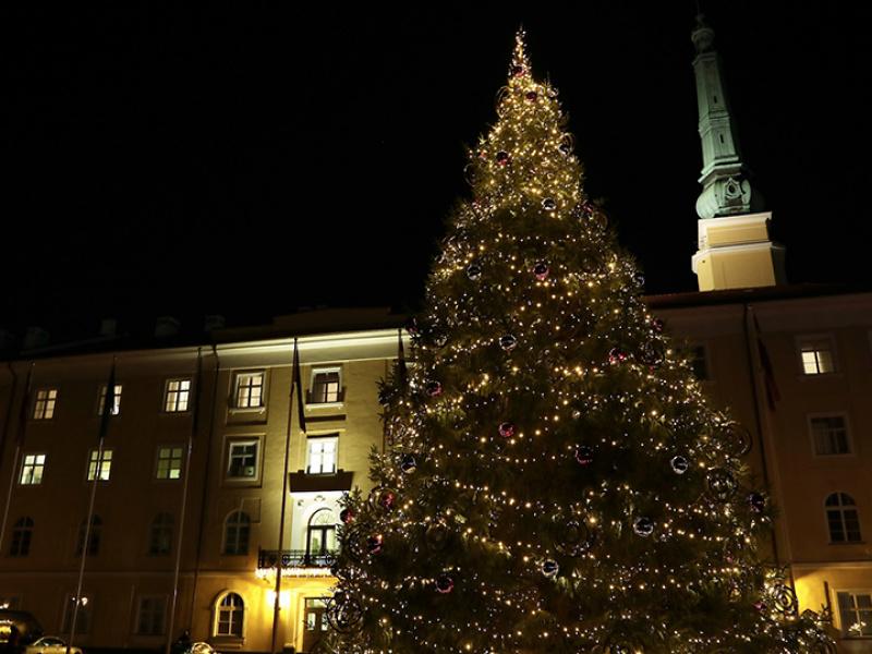 Valsts prezidents pie Rīgas pils iededz Ziemassvētku egli. FOTO